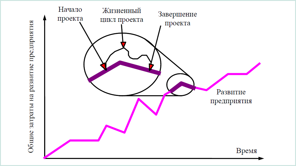 Таким образом, жизненный цикл